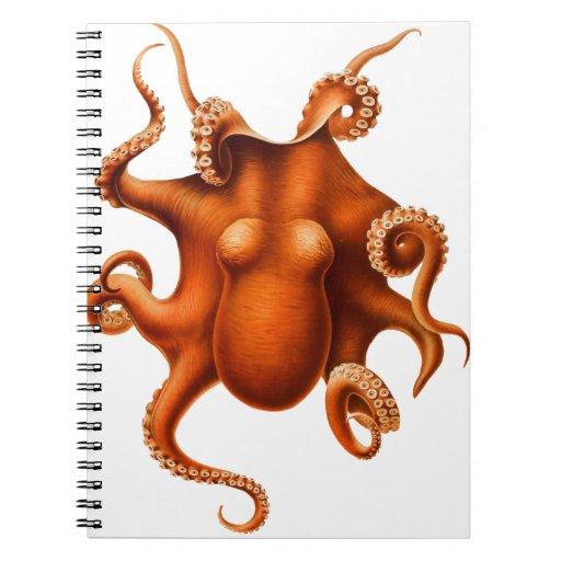 Octopus Illustration Spiral Notebook