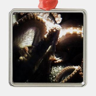 Octopus Newport Aquarium Silver-Colored Square Decoration