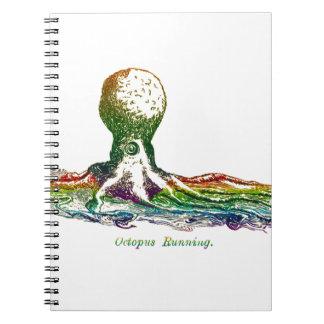 Octopus Running Notebooks