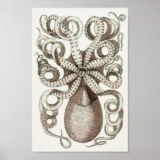 Octopus Vintage Cephalopod Sea Creatures Art Print