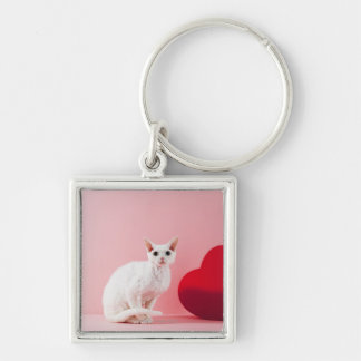 Odd-eyed cat Silver-Colored square key ring