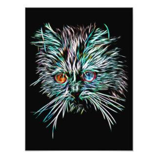 Odd-Eyed Glowing Cat Photo Print