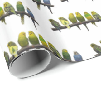 Odd One Out Wrapping Paper (choose colour)