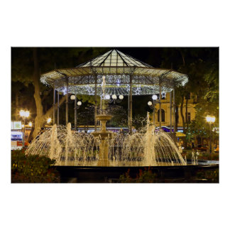 Odessa Fountain at Night Poster
