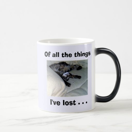 Of all the things I've lost . . . Coffee Mug