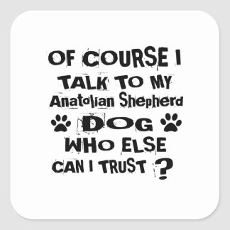 Of Course I Talk To My Anatolian Shepherd Dog Desi Square Sticker