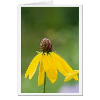 off petal greeting card