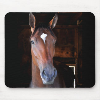 Off the Tracks Mouse Pad