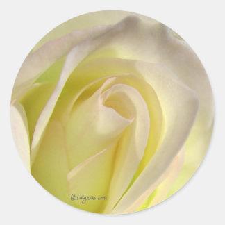 Off White Rose Sticker Envelope Closure