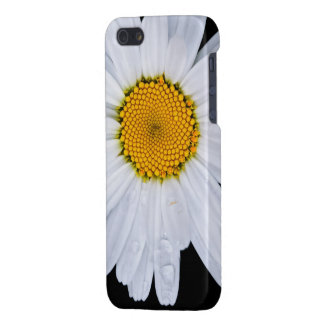 offer case for iPhone 5