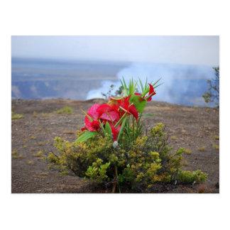 Offering to Pele, Hawaiian Volcano Goddess Postcard