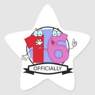 Officially 16 Birthday Banner Star Stickers