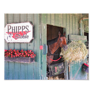 Ogden Phipps Stables with Scampering Art Photo