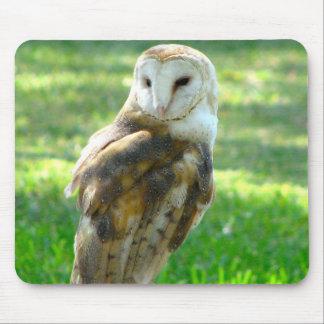 Oh Barn Owl Mouse Pad