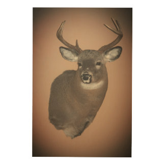 Oh Deer!! wall Art Wood Prints