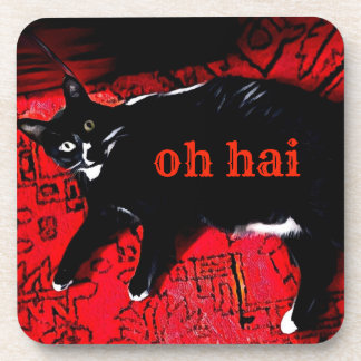 Oh Hai coasters with cork back - set of 6
