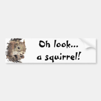 Oh look... a squirrel! Attention Humor Bumper Sticker