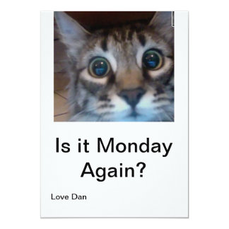 Oh no, its Monday again? Funny card with cute cat! 13 Cm X 18 Cm Invitation Card