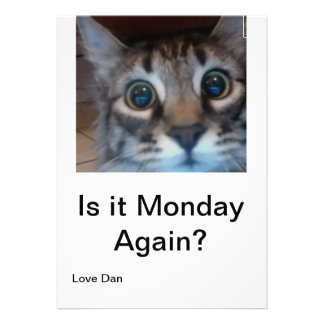 Oh no its Monday again Funny card with cute cat