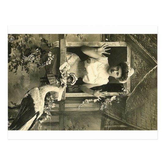Oh no! The infernal stork! Postcard