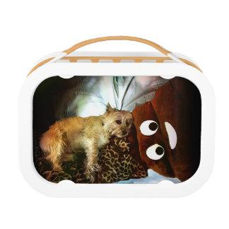 Oh, Poop! Yubo Lunchbox