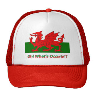 oh whats occurring welsh dragon cap