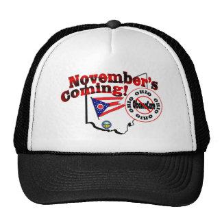 Ohio Anti ObamaCare – November's Coming! Cap