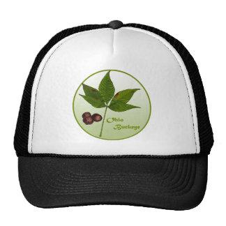 Ohio Buckeye Tree Cap