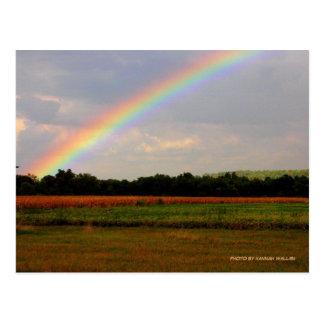 Ohio Rainbow Postcard