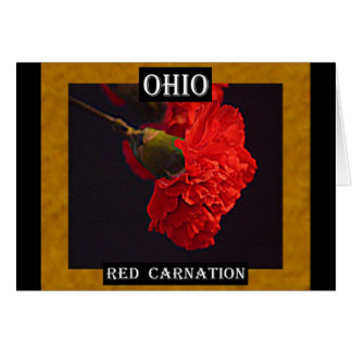 Ohio Red Carnation Greeting Card