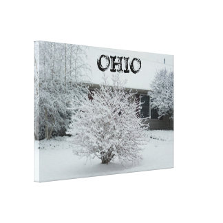 OHIO WITH SNOW canvas Stretched Canvas Print