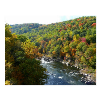 Ohiopyle River in Fall II Landscape Photography Postcard