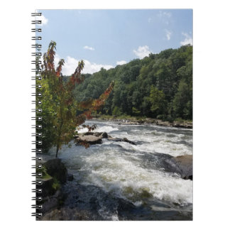Ohiopyle State Park Notebook