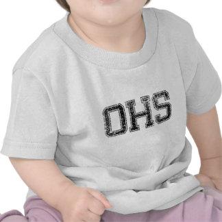 OHS High School - Vintage, Distressed Tee Shirt