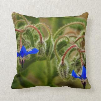 Oil lamp cushion