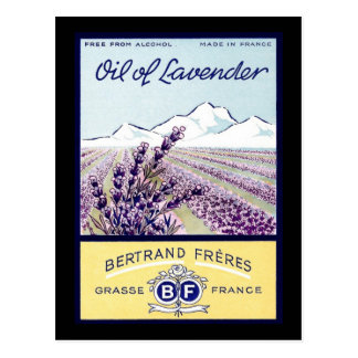 Oil of Lavender - Grasse France Postcard