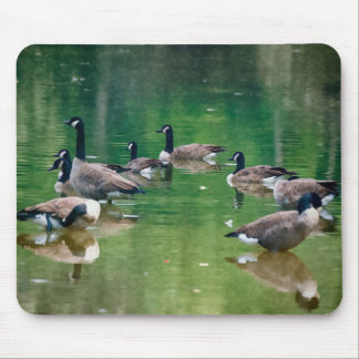 Oil painted Canadian geese Mouse Pad