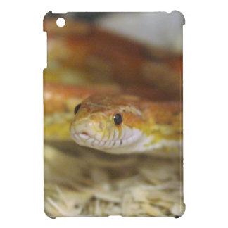 oj the snake case for the iPad mini