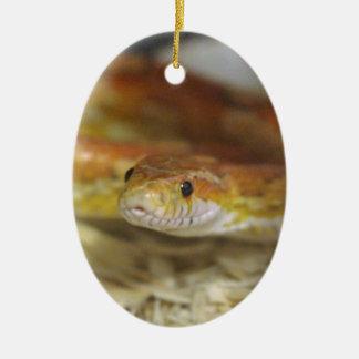 oj the snake ceramic ornament