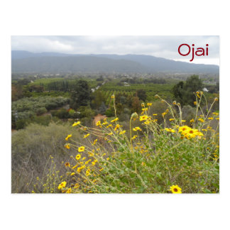 Ojai Valley, California Postcard
