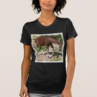 Okapi (Okapia johnstoni) near pond among vegetatio T-Shirt