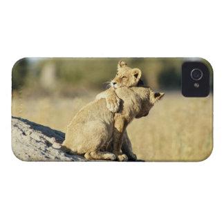 Okavango Delta, Botswana 2 iPhone 4 Case-Mate Cases