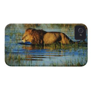 Okavango Delta, Botswana 3 iPhone 4 Case