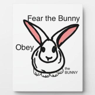Okay bunny plaque