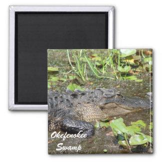 Okefenokee Swamp Waycross Georgia Alligator Magnet