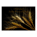 Oklahoma! Amber Waves of Grain Cards