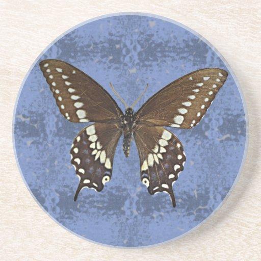 Oklahoma Black Swallowtail Butterfly Beverage Coaster