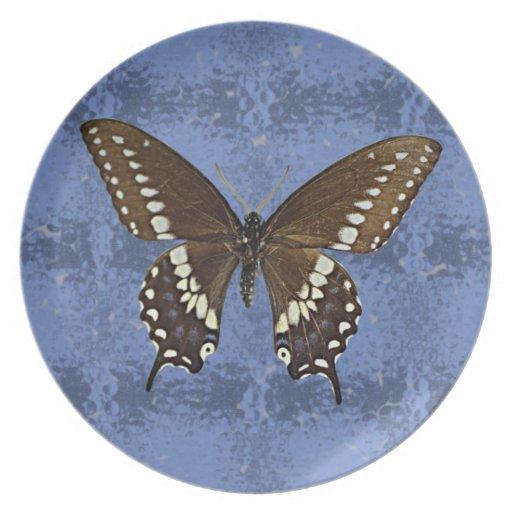 Oklahoma Black Swallowtail Butterfly Dinner Plates