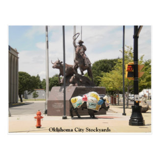 Oklahoma City Stockyards buffalo and cowboy Postcard
