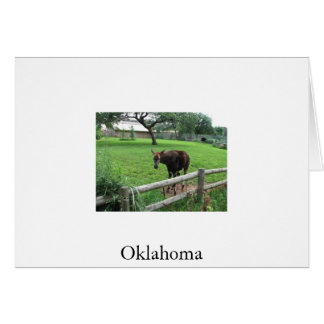 Oklahoma  photo taken by tina greeting card